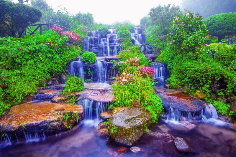 Water fall. Beautiful water fall in nature royalty free stock image
