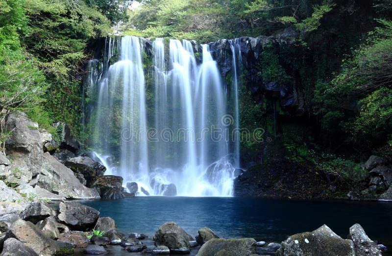 Water Fall. With beautiful white water flowing between lush green forest and rocks stock image