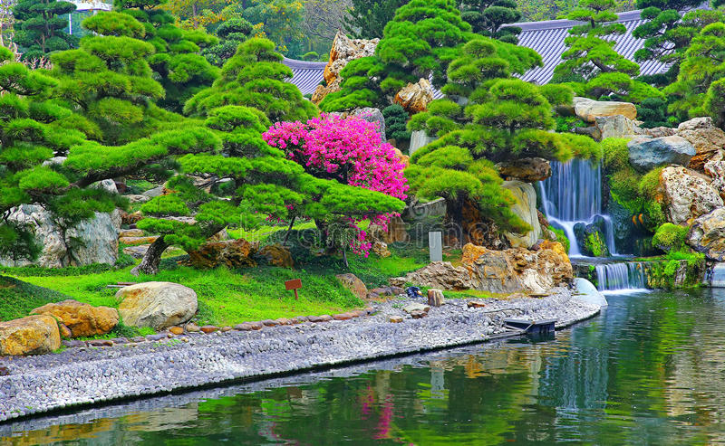 Download Water Fall In Chinese Zen Garden Stock Image   Image Of Flowers,  Landscape:
