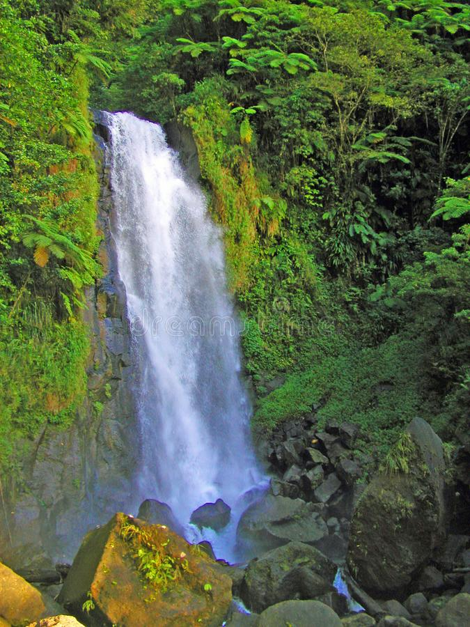 Water fall in Dominica stock photography