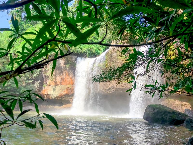 Water fall with forest and green leaf,outdoor.  royalty free stock photo