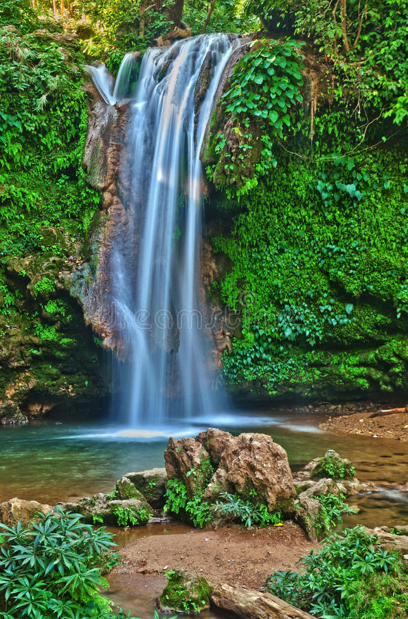 Water fall: white water in flow. Water fall at Jim Corbett National Park, Ramnagar, india with beautiful white water flowing between lush green forest and rocks royalty free stock photos