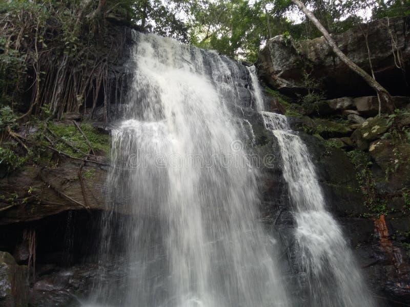 Water fall stock photos