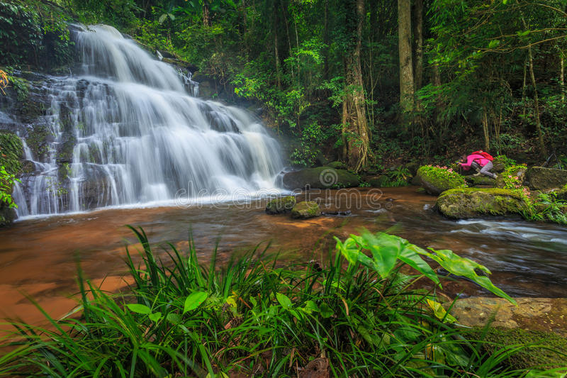 Water fall. Scene in green nature and stone royalty free stock photos