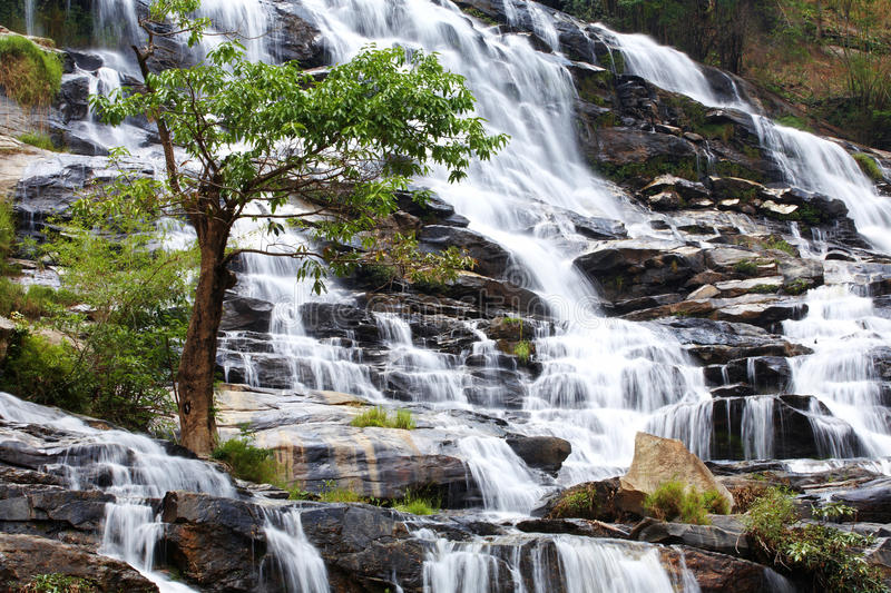 Water fall and tree. In sun light stock photos