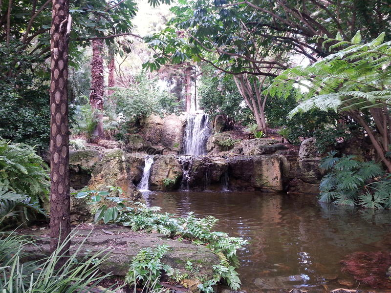 Secluded Waterfall Narrows Interchange Perth Western Australia royalty free stock photography