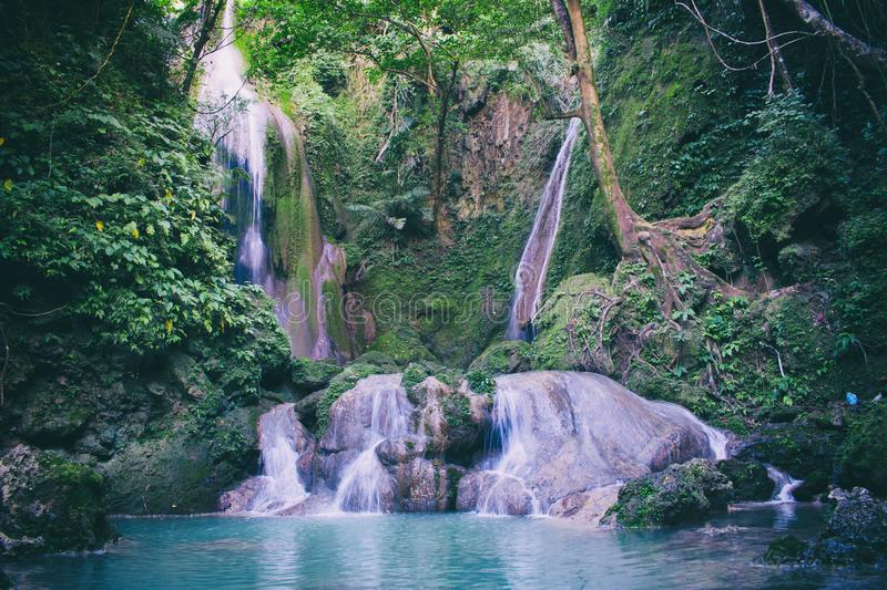 Water Falls in With Green Trees Photography stock image