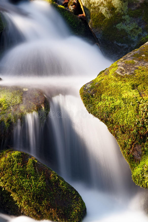 Verdant Cascade royalty free stock images