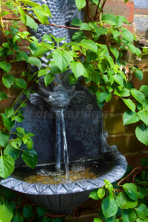 Free Water Feature Stock Photo - 13307280