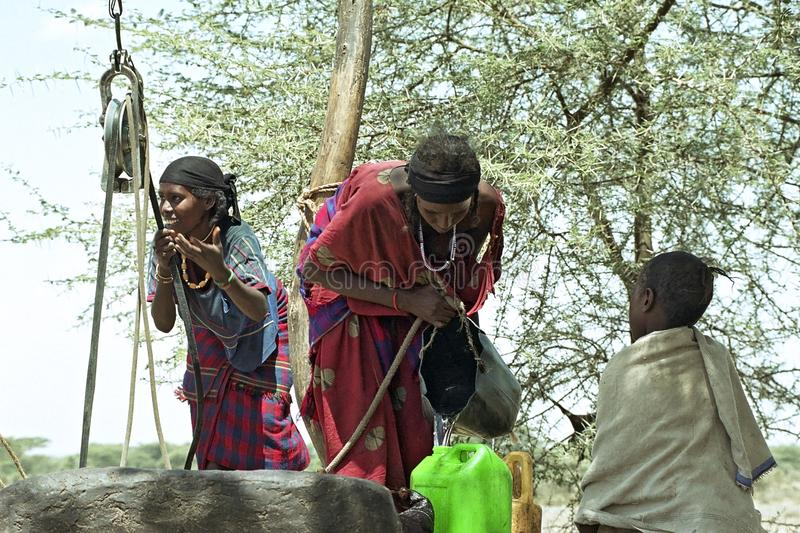 Water fetching Afar women in eastern Ethiopia. Ethiopia, Afar region: The Afar, an ethnic group of semi-nomadic cattle farmers in the are affected by of an stock photography