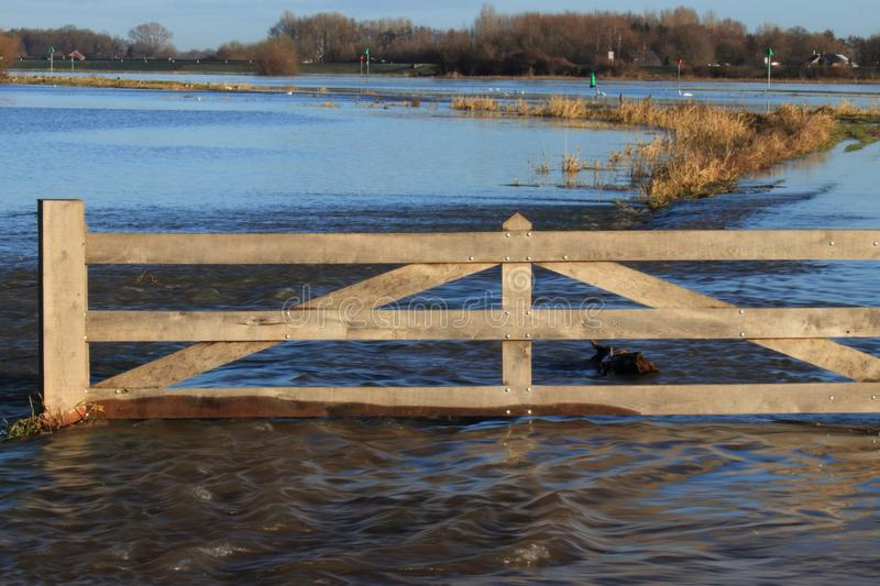 Water flooding the dutch countryside. Water flooding the floodplains of the river ijssel near the village olst and welsum. Wooden fence in the water royalty free stock photography
