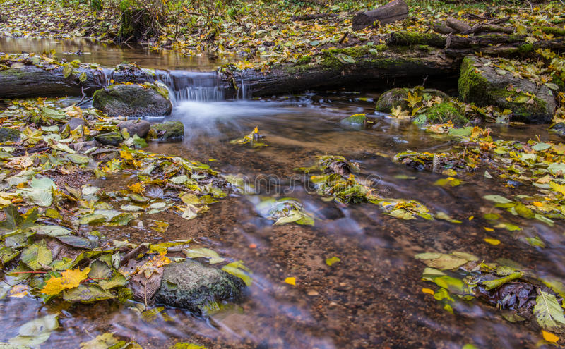 Water flow, fall leaves. Water flow in long exposure, fall leaves royalty free stock photos