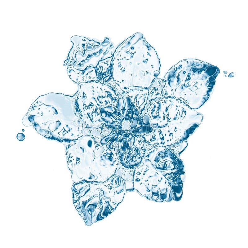 Water flower stock illustration