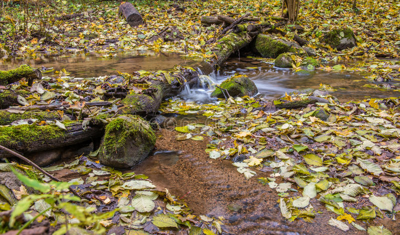 Water flowing, fall leaves. Water flow in long exposure, fall leaves stock photography
