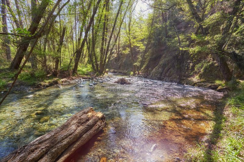 Water flowing in a mountain river at Troodos mountains, Cyprus. Water flowing in a mountain river creating small waterfalls at Troodos mountains, Cyprus royalty free stock photography