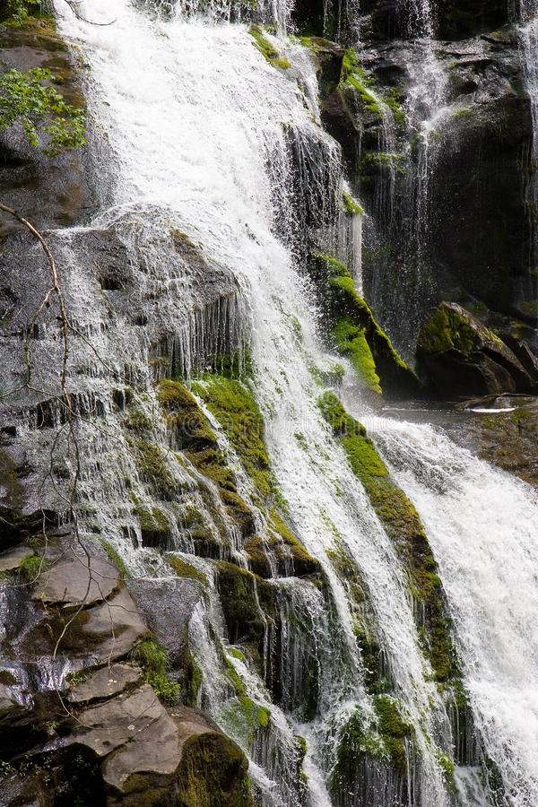 Download Water Flowing Over Rocks stock photo. Image of trees, creek - 6257992