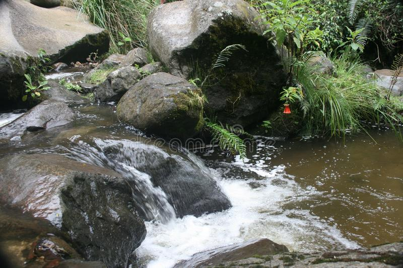 Stream flowing rapidly over rocks Otavalo Ecuador royalty free stock photography