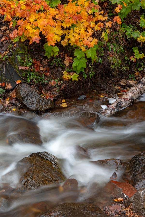 Jacobs Creek in Eagle River Michigan, USA. Water flows rapidly down Jacobs Creek near Eagle River Michigan. Autumn colors in the background. Near the popular Jam stock photo