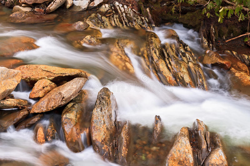 Whitewater and Rocks. Water flows swiftly over a stream's rocky bottom in Great Smoky Mountains National Park, Tennessee, USA royalty free stock image