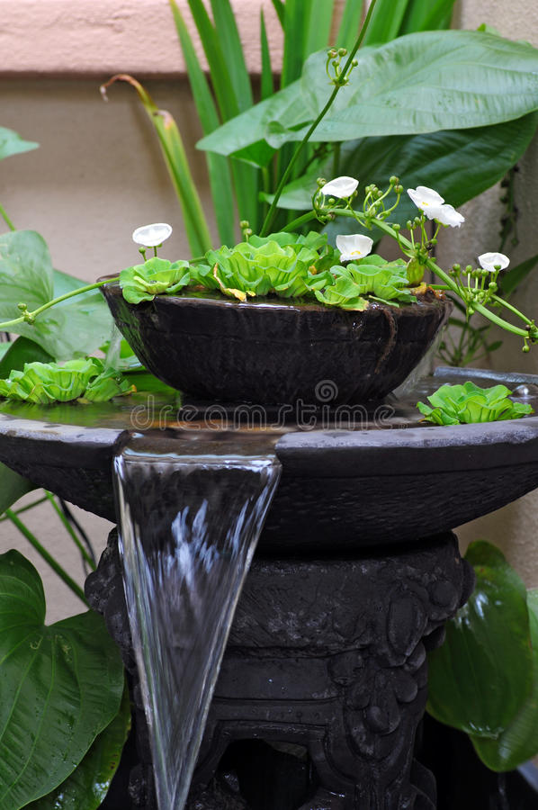 Water fountain. Garden with small water fountain stock images