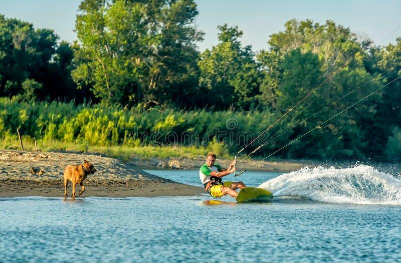Water fun and kiteboarding in Ada Bojana, Montenegro, with a dog. Running royalty free stock photo