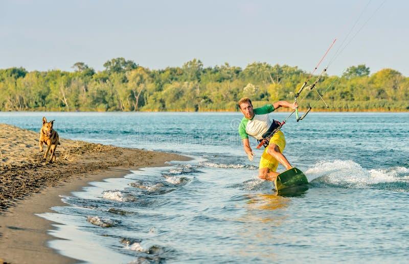 Water fun and kiteboarding in Ada Bojana, Montenegro, with a dog. Running royalty free stock image