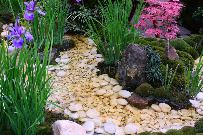 Download Water garden stock image. Image of moss, rocks, leaves - 14355303