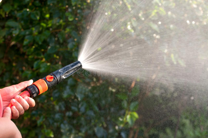 Water from a garden hose royalty free stock photo