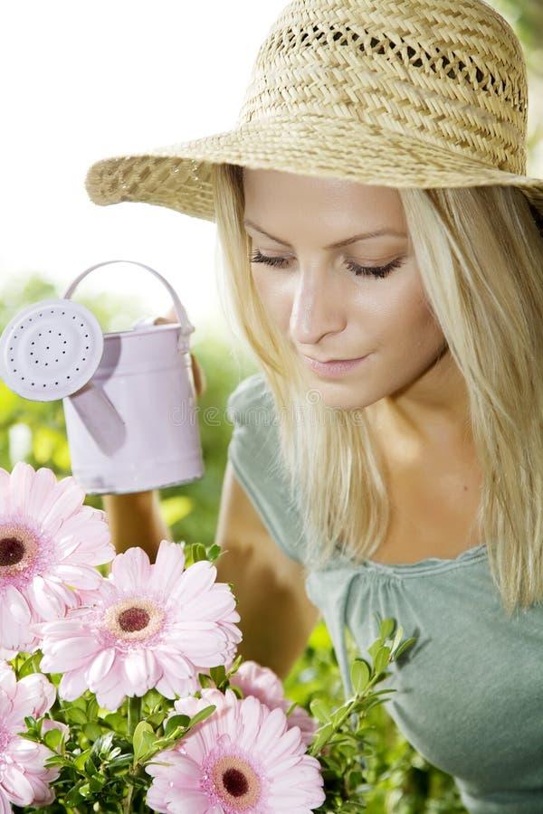Water gevende bloemen stock fotografie