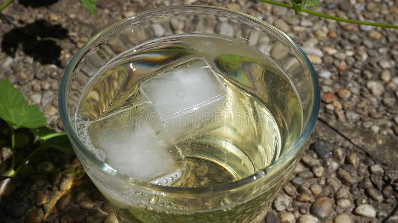 Water, Glass, Drink, Mint Julep stock image