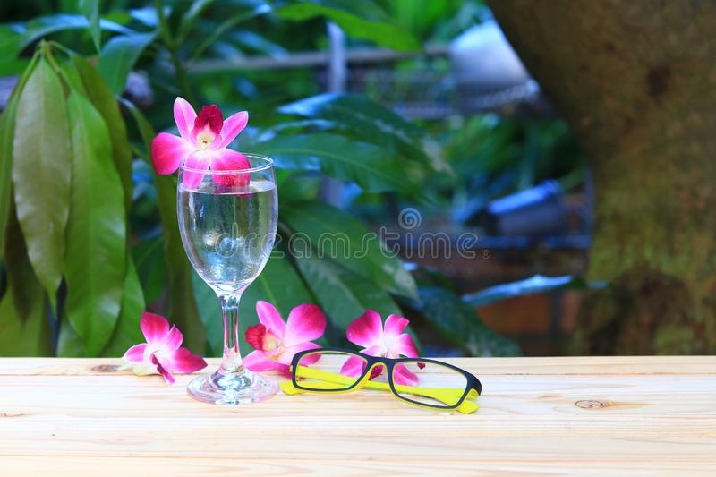 Water glass and glasses yellow with flower orchid purple beautiful on wooden floor board. spa concept.  stock photography