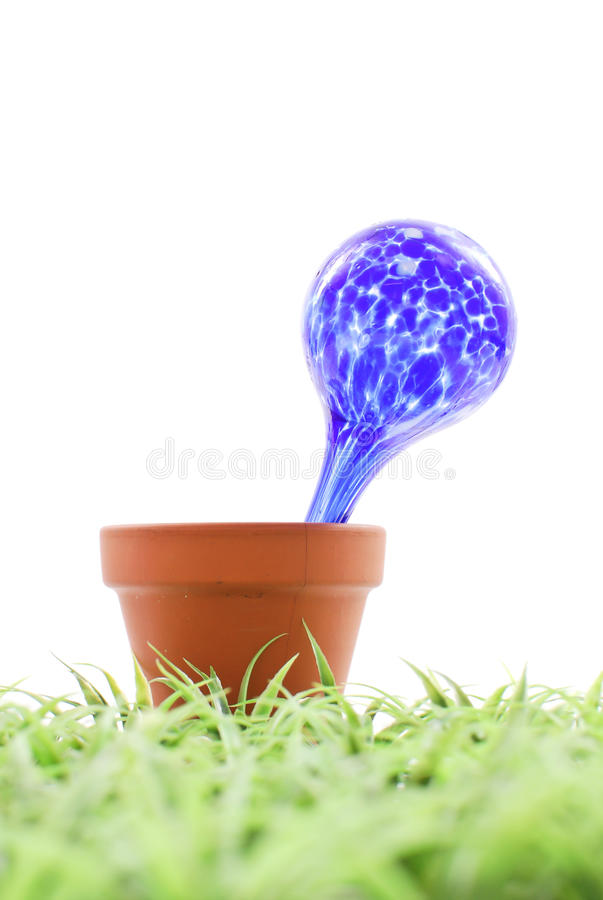 Water Globe. In Plant Pot on the Grass stock images