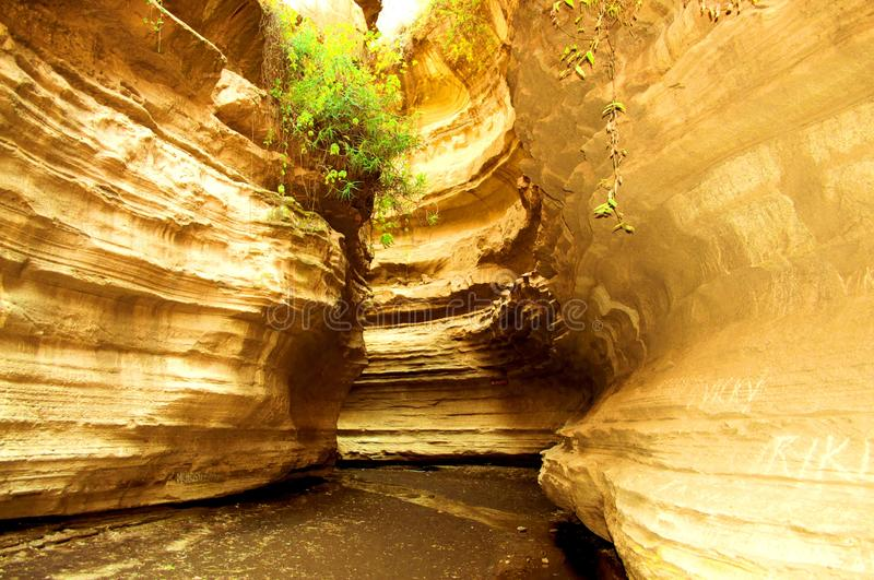 Water-gouged gorges in the Hells Gate National Park in Kenya stock photos
