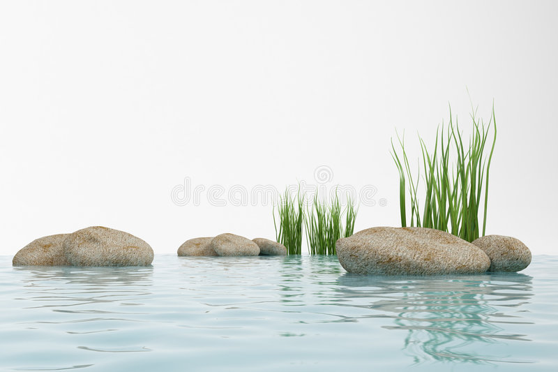 Water, gras en steen stock fotografie