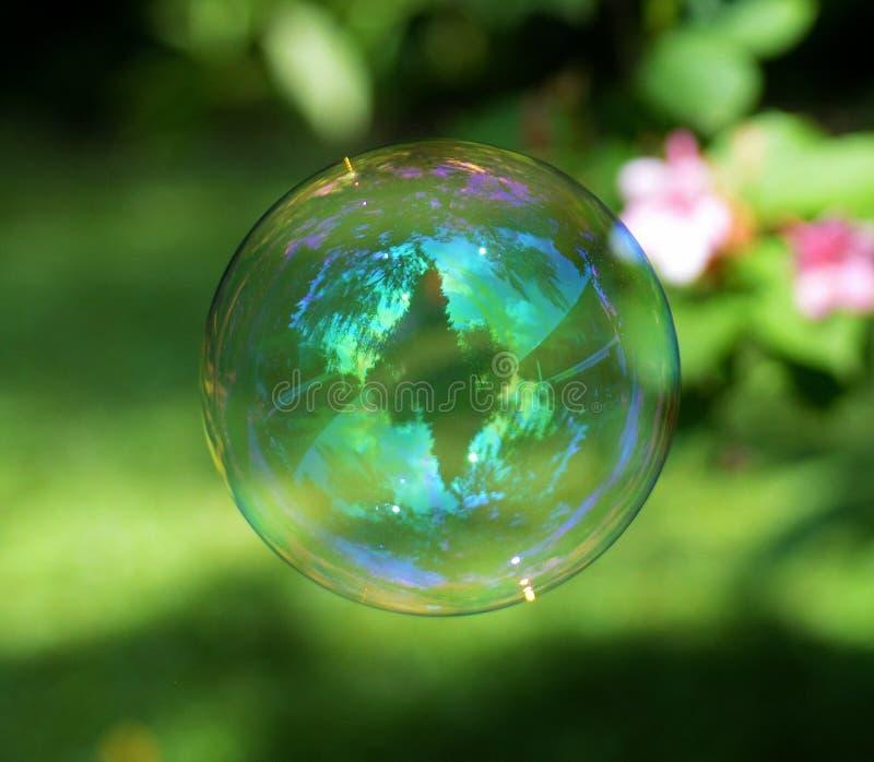 Water, Green, Liquid Bubble, Macro Photography stock image