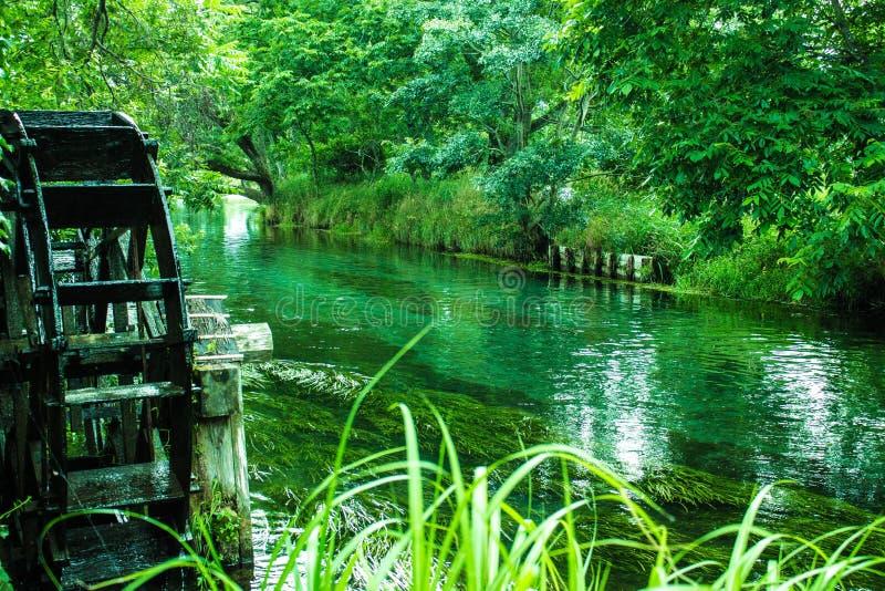 Water, Green, Nature, Reflection stock photos