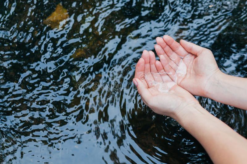 Water in the hands of women. Woman taking clear in the lake royalty free stock photo