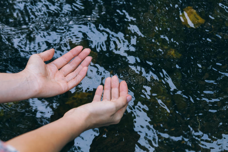 Water in the hands of women. Woman taking clear in the lake stock photography