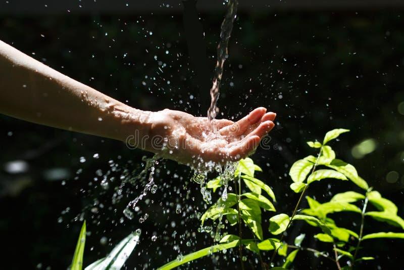 Water het gieten in menselijke hand op aard, milieukwestie royalty-vrije stock foto's
