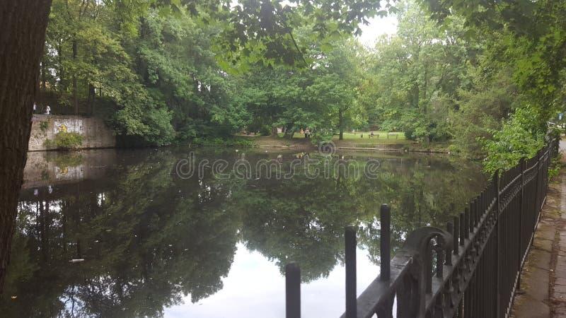 Water in het Park stock afbeeldingen