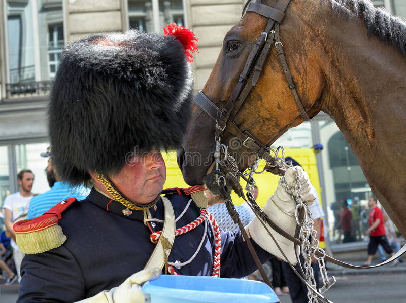 Water for a horse. BRUSSELS, BELGIUM - JULY, 21: Participant of historical reconstruction gives water to his horse during National Day of Belgium defile on July royalty free stock image