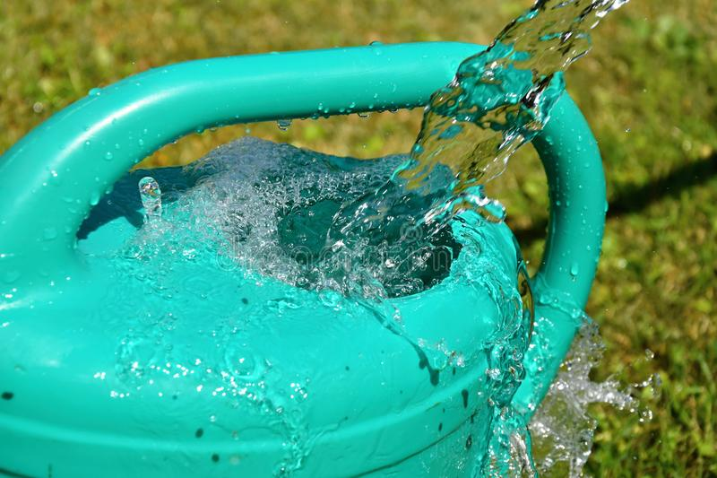 The water hose flows from the garden hose into the watering can. Wasteful wasting water. royalty free stock image