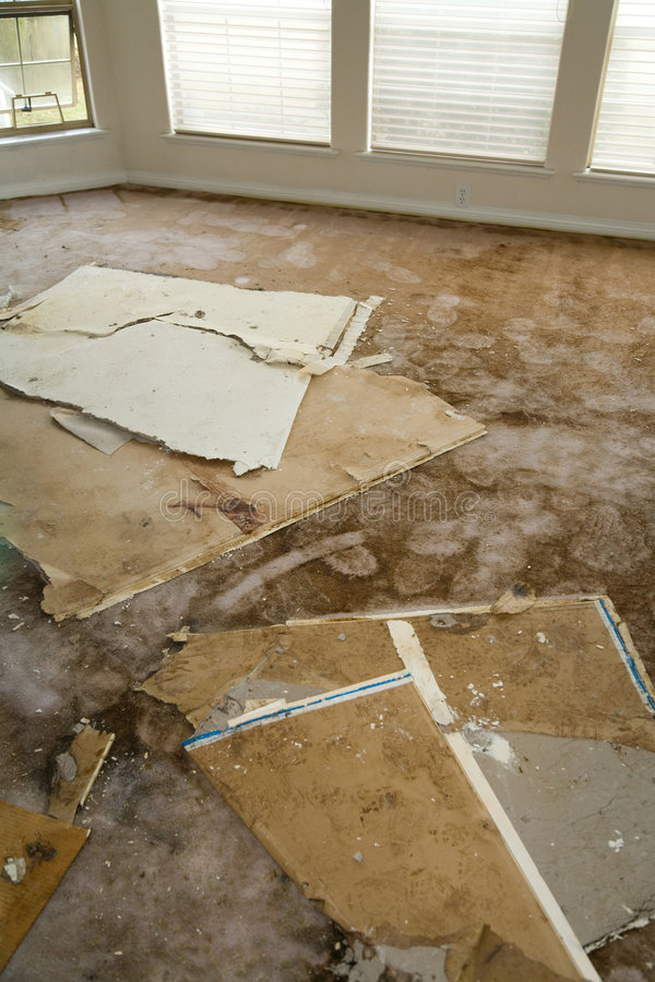 Water leaking damaged home. Home Interior Water leaking damaged plasterboard and carpet stock image