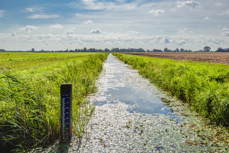 Water level tide gauge in a Dutch polder ditch. Backlit image of a polder landscape in the Netherlands with a water level staff gauge in the drainage ditch royalty free stock image