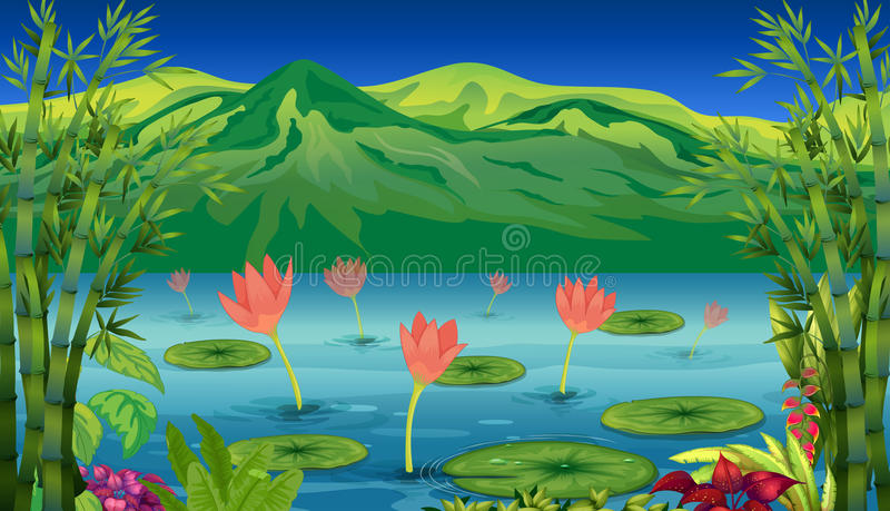 The water lilies and flowers at the lake stock illustration