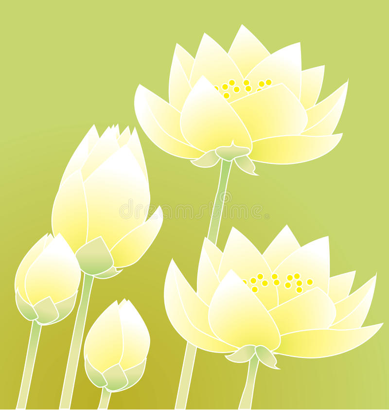 Download Water Lily Royalty Free Stock Photos - Image: 23445818