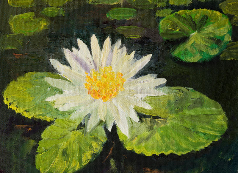Download Water Lily stock illustration. Illustration of flower - 32158020