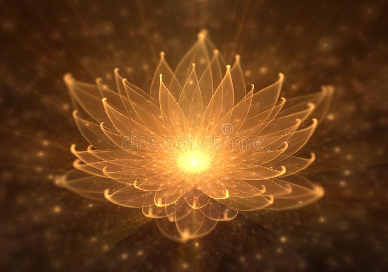Water Lily, Radiant Orange Lotus with Rays of Light. Radiant orange lotus with rays of light, Water Lily, enlightenment or meditation and universe, magic scene vector illustration
