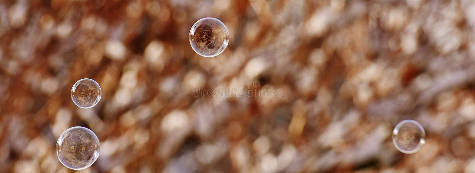 Water, Macro Photography, Close Up, Stock Photography royalty free stock photos