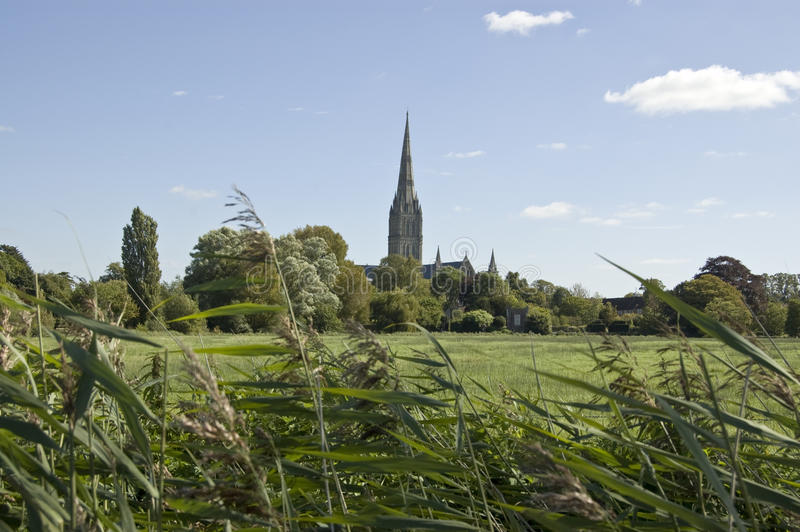 Download Water Meadows And Cathedral, Salisbury Stock Image - Image: 27245677